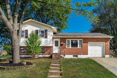 Westerville Single Family Home For Sale: 3520 Karikal Drive