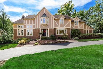 Dublin Single Family Home For Sale: 5945 Whittingham Drive