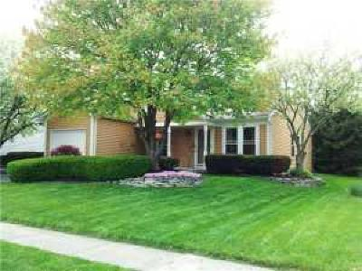 Westerville Single Family Home For Sale: 5233 Mardela Drive