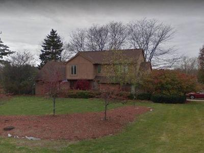 Blacklick OH Single Family Home For Sale: $389,900