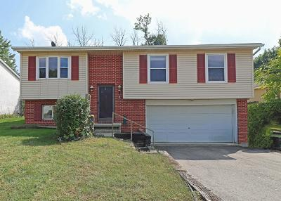 Union County Single Family Home For Sale: 857 Lantern Drive