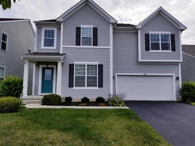 Blacklick Single Family Home For Sale: 8625 Crooked Maple Drive