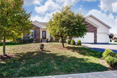 Franklin County, Delaware County, Fairfield County, Hocking County, Licking County, Madison County, Morrow County, Perry County, Pickaway County, Union County Single Family Home For Sale: 195 Chestnut Estates Drive