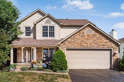 Etna OH Single Family Home For Sale: $229,900