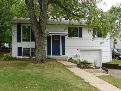 Reynoldsburg Single Family Home For Sale: 6313 Rygate Drive