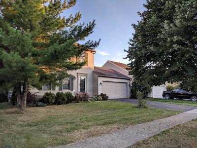 Union County Single Family Home For Sale: 1121 Mill Park Drive