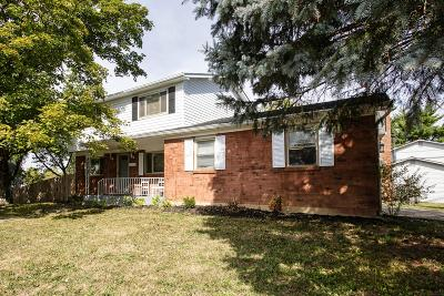 Westerville Single Family Home For Sale: 3666 E Dublin-Granville Road