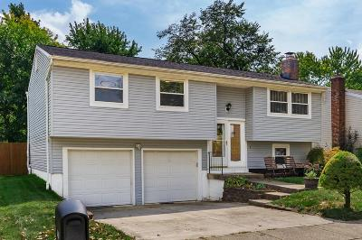 Grove City Single Family Home For Sale: 2459 Opal Court