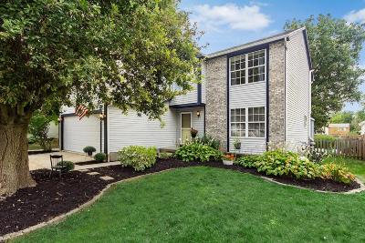 Hilliard Single Family Home For Sale: 5695 Converse Court