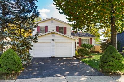 Columbus Single Family Home For Sale: 816 Eliots Oak Road