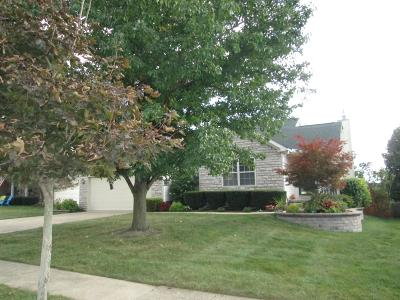 Single Family Home For Sale: 284 Kyber Run Circle
