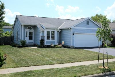 Hilliard Single Family Home For Sale: 4957 Silver Bow Drive