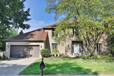 Powell Single Family Home For Sale: 283 Muladore Drive
