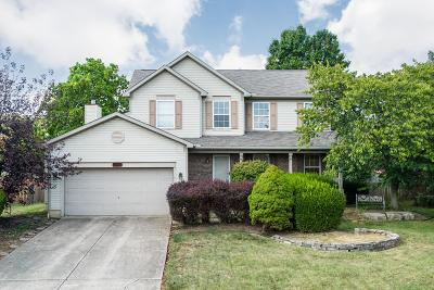 Hilliard Single Family Home For Sale: 3365 Scioto Farms Drive