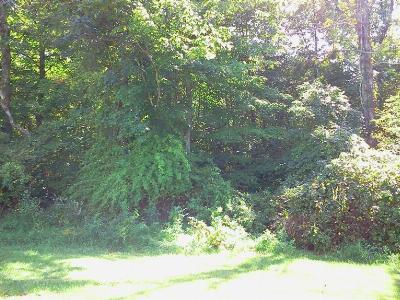 Milan Residential Lots & Land For Sale: Whippoorwill Drive #10