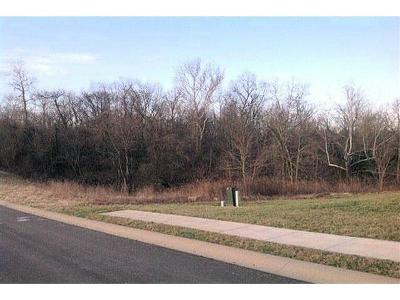 West Harrison Residential Lots & Land For Sale: 64 Old Orchard Subdivision