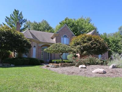 Single Family Home For Sale: 9693 Farmstead Drive