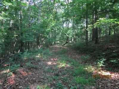 Brushcreek Twp OH Residential Lots & Land For Sale: $95,000