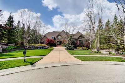 Single Family Home For Sale: 442 Vista Ridge Drive