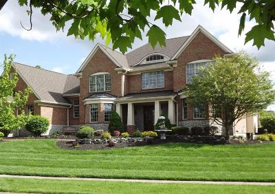 Clermont County Single Family Home For Sale: 6564 Oasis Drive