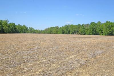 Adams County, Brown County, Clinton County, Highland County Residential Lots & Land For Sale: Eden Road