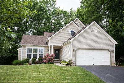 Clermont County Single Family Home For Sale: 4189 Sagewood Court