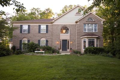 Clermont County Single Family Home For Sale: 4295 Wellington Drive