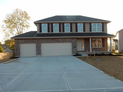 Single Family Home For Sale: 284 Rachel Lane