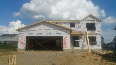 Single Family Home For Sale: 172 Shanda Drive