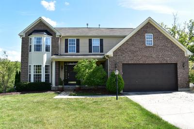 Single Family Home For Sale: 410 Brookhurst Drive