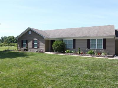 Clermont County Single Family Home For Sale: 1019 Bucktown Trails