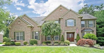Clermont County Single Family Home For Sale: 6690 Deerview Drive