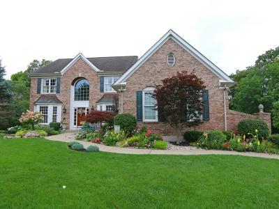 Clermont County Single Family Home For Sale: 6675 Miami Woods Drive