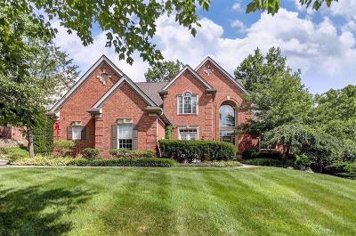 Clermont County Single Family Home For Sale: 1207 Obannon Creek Lane