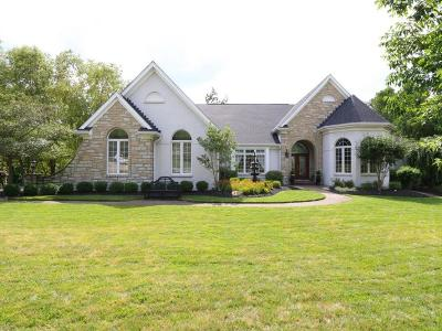 Clermont County Single Family Home For Sale: 739 Stonehill Run