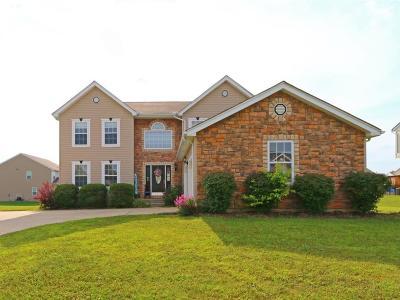 Single Family Home For Sale: 531 Wyandot Woods Boulevard