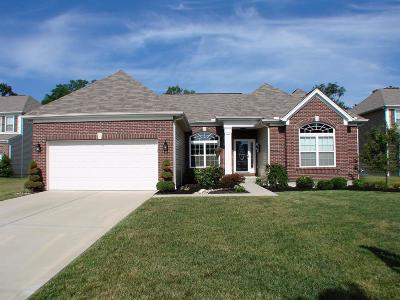Clermont County Single Family Home For Sale: 4197 Silver Streak Drive