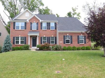 Clermont County Single Family Home For Sale: 1082 Sophia Drive
