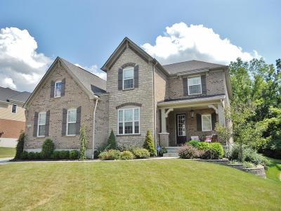 Clermont County Single Family Home For Sale: 106 Colonial Drive