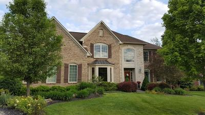 Clermont County Single Family Home For Sale: 6719 Sandy Shores Drive