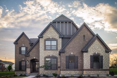 Warren County Single Family Home For Sale: 6653 Palmetto Drive