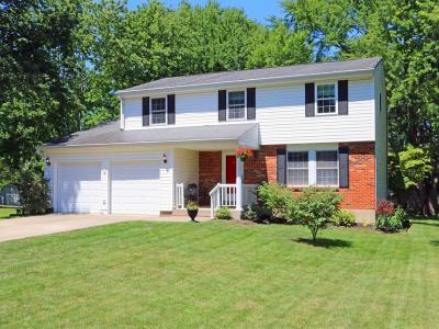 Warren County Single Family Home For Sale: 221 Van Buren Drive