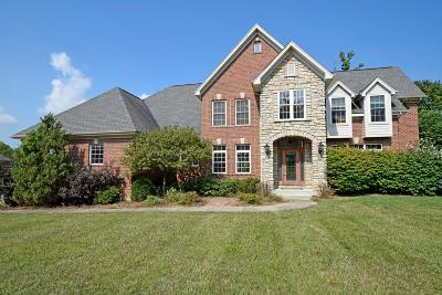 Hamilton County Single Family Home For Sale: 6283 Swanbrook Drive