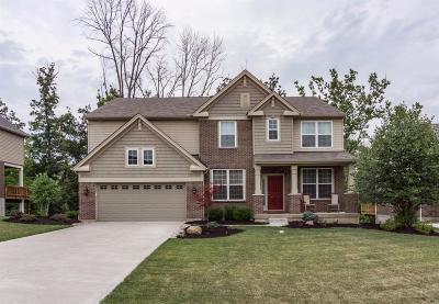 Hamilton County Single Family Home For Sale: 213 Edgefield Drive