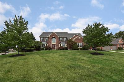 Clermont County Single Family Home For Sale: 6719 Deerview Drive