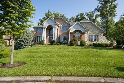 Hamilton County Single Family Home For Sale: 10342 Ryans Way