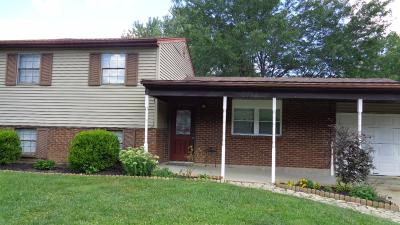 Clermont County Single Family Home For Sale: 6712 St Route 48