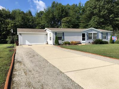 Clermont County Single Family Home For Sale: 4313 East Fork Valley Drive