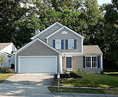 Warren County Single Family Home For Sale: 2984 Stony Hollow Court
