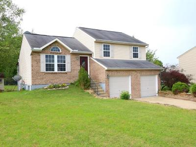 Clermont County Single Family Home For Sale: 1441 Breckenridge Drive